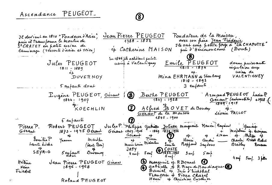 Arbre_Peugeot_1.jpg